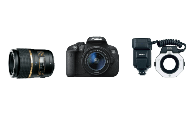 Choosing right equipments for the Dental Photography